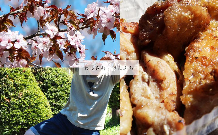 花も団子も。塩狩峠一目千本桜・絵本の里けんぶち