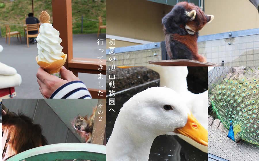 初夏の旭山動物園へ行ってきました。その2